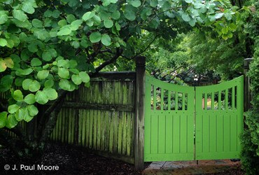 gates category image green